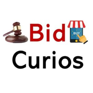 BidCurios Logo